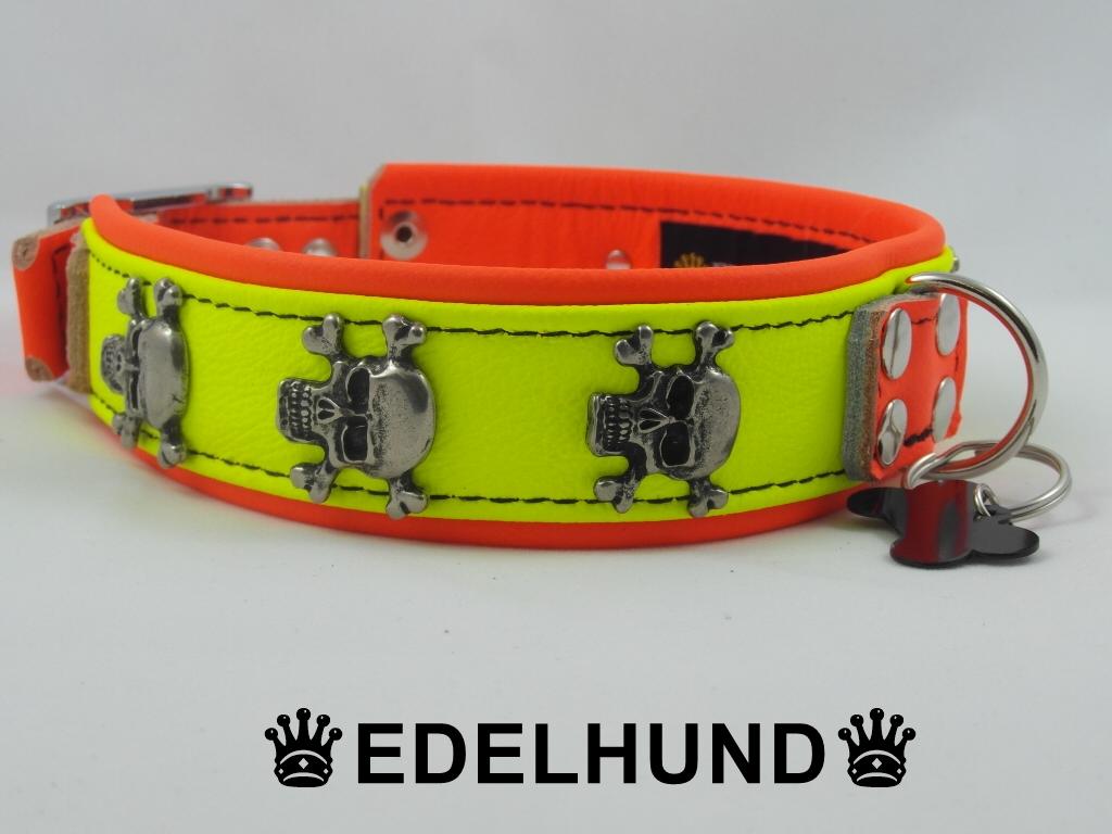 Ausgefallenes Hundehalsband aus Leder