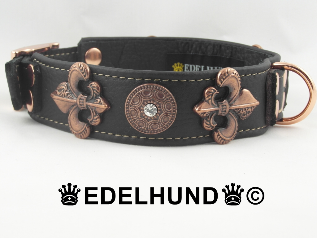 Exklusives Hundehalsband Kupfer